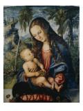 Madonna under the Fir Tree, C.1510 Giclee Print by Lucas Cranach the Elder