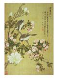 Crabapple, Magnolia and Baitou Birds Giclée-tryk af Ma Yuanyu