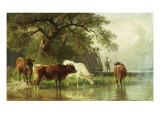 Cattle Watering in a River Landscape, 19th Century Giclée-tryk af Friedrich Voltz