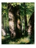 In the Forest of Fontainebleau Reproduction procédé giclée par Pierre-Auguste Renoir