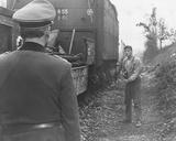 The Train Fotografia