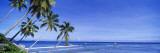 La Digue Island, Seychelles Decalcomania da muro