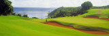 Princeville Golf Course, Kauai, Hawaii, USA Decalcomania da muro di Panoramic Images,