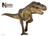 T. Rex Veggoverføringsbilde