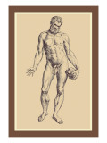 Man Wandtattoo von Andreas Vesalius