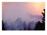 Retardent Drops over Forest Fire Wall Decal by Bob Nichols