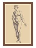 Woman Wandtattoo von Andreas Vesalius