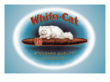 White-Cat Cigars Wall Decal