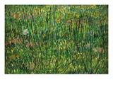 Patch of Grass Decalcomania da muro di Vincent van Gogh