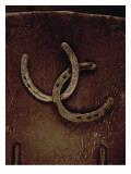 Lucky Horse Shoes on Rust Metallic Decalcomania da muro