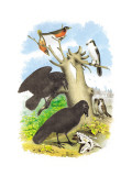 The Raven Veggoverføringsbilde av Theodore Jasper