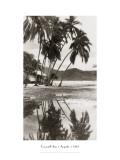 Coco Palms, Acapulco, 1932 Adesivo de parede