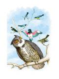 The Great Horned Owl Veggoverføringsbilde av Theodore Jasper