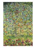 Apple Tree Wall Decal by Gustav Klimt