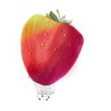 Strawberry Giant Seinätarra