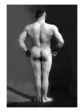 Bodybuilder's Back Wallstickers