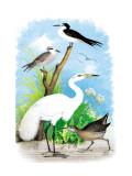 The Great White Egret Veggoverføringsbilde av Theodore Jasper