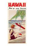 Hawaii, Now or Any Season Adesivo de parede