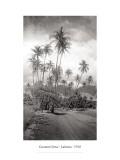 Coconut Grove, Lahaina, 1910 Muursticker van Ray Jerome Baker