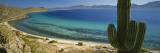 Cordon Cactus on the Coast, Bay of Conception, Baja California, Mexico Wallstickers af Panoramic Images,