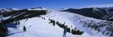Skiers Skiing, Vail Ski Resort, Vail, Colorado, USA Wallstickers