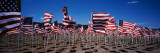 American Flags Laid Out in a Field, Questa, Taos County, New Mexico, USA Wallstickers af Panoramic Images,