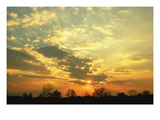 Altocumulus Clouds Wall Decal by Ralph F. Kresge