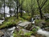 An Steall Waterfall That Cascading Down the Face of an Gearanach Above Glen Nevis Fotografisk trykk av Feargus Cooney