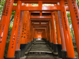 Traditional Torii with Inscriptions at Fushimi Inari Shrine Fotografie-Druck von Christopher Groenhout