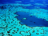 Aerial of Heart-Shaped Reef at Hardy Reef, Near Whitsunday Islands Fotografie-Druck von Holger Leue