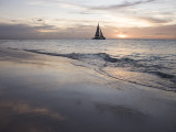 Catamaran at Sunset Seen from Bucuti Beach Resort on Eagle Beach Fotografisk tryk af Holger Leue