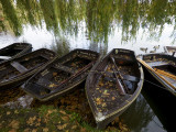 Row Boats Moored at Lakeside at Hever Castle Photographic Print by Doug McKinlay