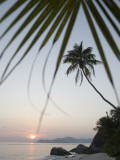 Coconut Tree Sunset Silhouette at Pte. Source D'Argent Fotografisk tryk af Holger Leue