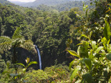 Waterfall and Rainforest Photographic Print by Christer Fredriksson