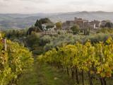 Vineyards in Hamlet of Castello Di Volpaia, Near Radda in Chianti Fotografie-Druck von Glenn Van Der Knijff