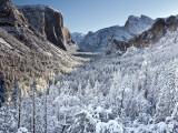 Winter in Yosemite National Park Fotografie-Druck von Douglas Steakley