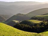 Spring Hills in Carmel Valley Fotografie-Druck von Douglas Steakley