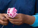 Woman in Blue Dress Holding Pink Lotus Flower Fotografisk tryk af Antony Giblin