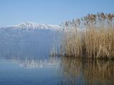 Lake Ohrid Shore with Macedonian Mountains in Background Valokuvavedos tekijänä Patrick Syder
