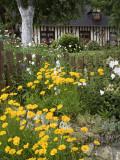 Exuberant Garden and Half-Timbered Cottage in Marais Vernier Region Fotografie-Druck von Barbara Van Zanten