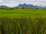 Peaks in Khao Sam Roi Yot National Park across Fields Photographic Print by Nicholas Reuss