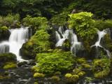 Waterfall at Fukidashi Park Fotografisk tryk af Shayne Hill