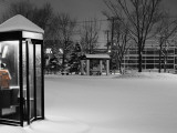 Public Telephone Box in Park, Covered in Snow, Ottowa-Cho Fotografisk tryk af Shayne Hill