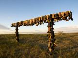 Boot Rack Fotografisk tryk af Mark Newman