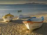 Panga Boats on Beach Along Bahia De San Felipe at Sunrise Fotografie-Druck von Witold Skrypczak