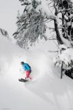 Snowboarder-Under Tree Poster