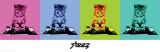 Steez-Dj Kitty Prints by  Steez