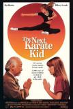 The Next Karate Kid Lámina maestra