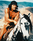 Charles Bronson - Chato's Land Photo