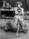 Turtle and Make-Up Photographic Print